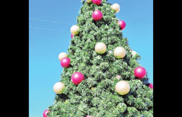 Tree-lighting kicks off Christmas in Mexia
