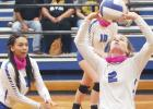 Lady 'Dogs defeat Mart, improve to 5-1