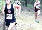 Mexia runners head to regional, eye state qualification